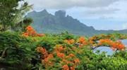 Mount Otemanu in Bora Bora