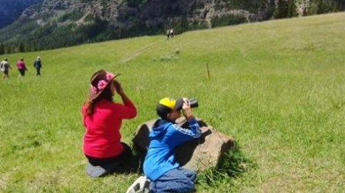 Sunrise wildlife viewing -Lamar Valley/Yellowstone