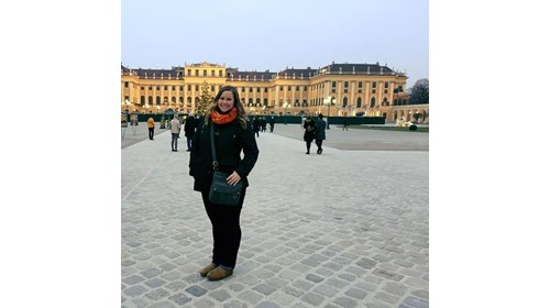Christmas Markets at Schonbrunn Palace in Vienna