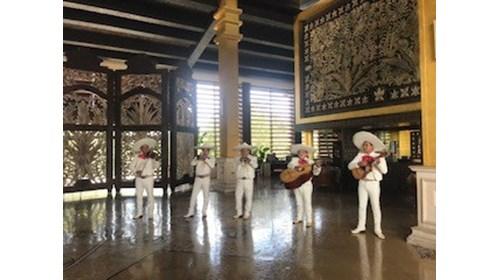 A wonderful Mariachi Band!