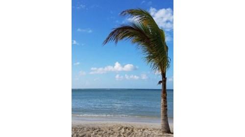 Chillin in Jamaica!