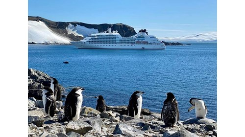 Join my group on Seabourn quest in Antarctica