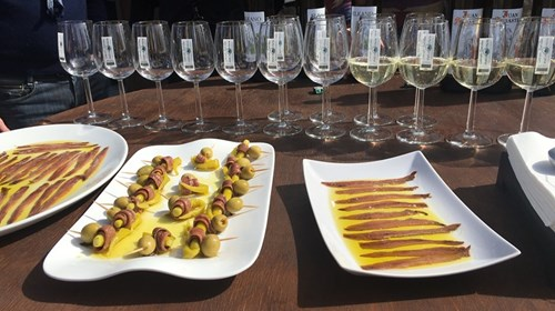 Wine tasting in San Sebastian, Spain