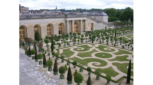 The Orangery at Versailles