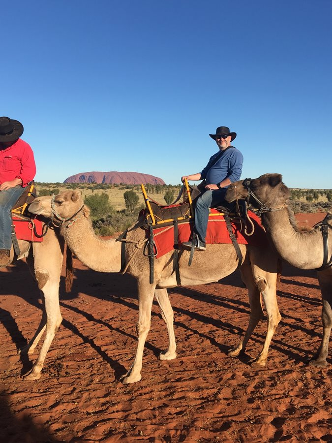 Uluru Sunrise Tour in Ayers Rock and by Camel!