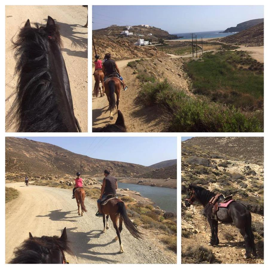 Horseback Riding In Mykonos