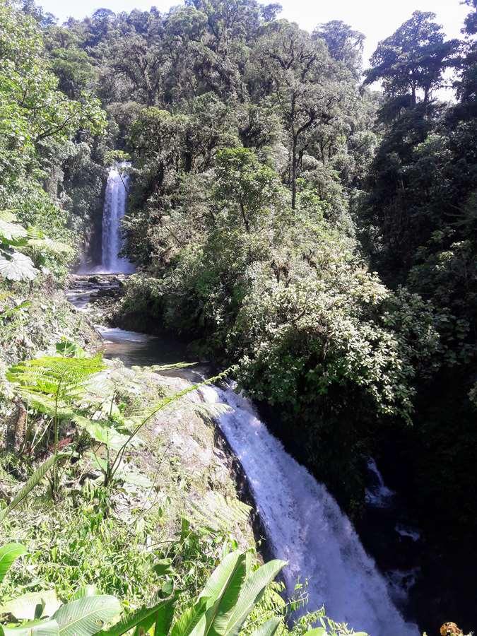 Beautiful grounds of the La Paz Waterfall Gardens