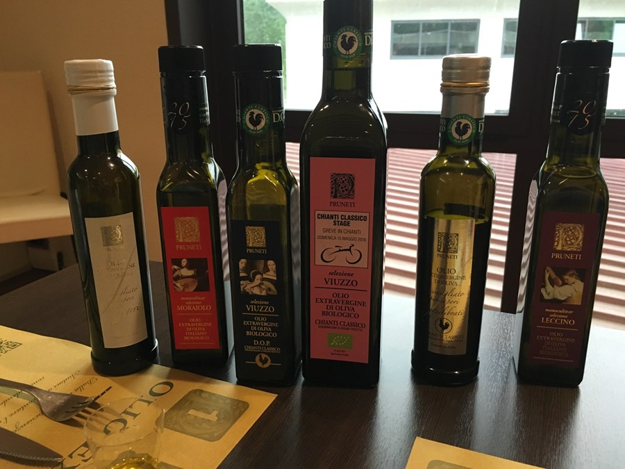 Olive oil tasting on our Tuscan bike ride
