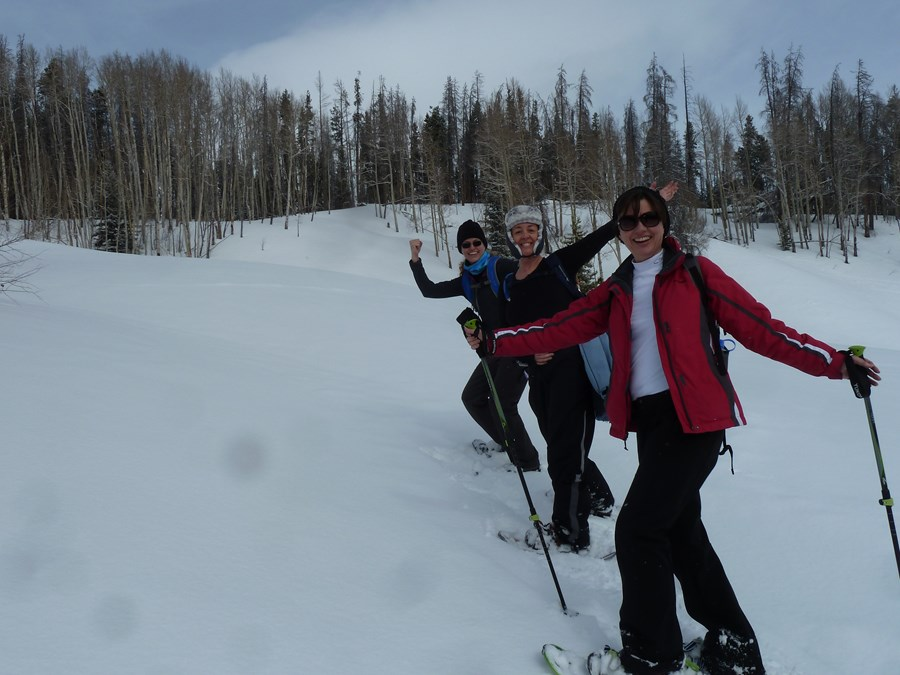 Snowshoeing, carving the mountain trail