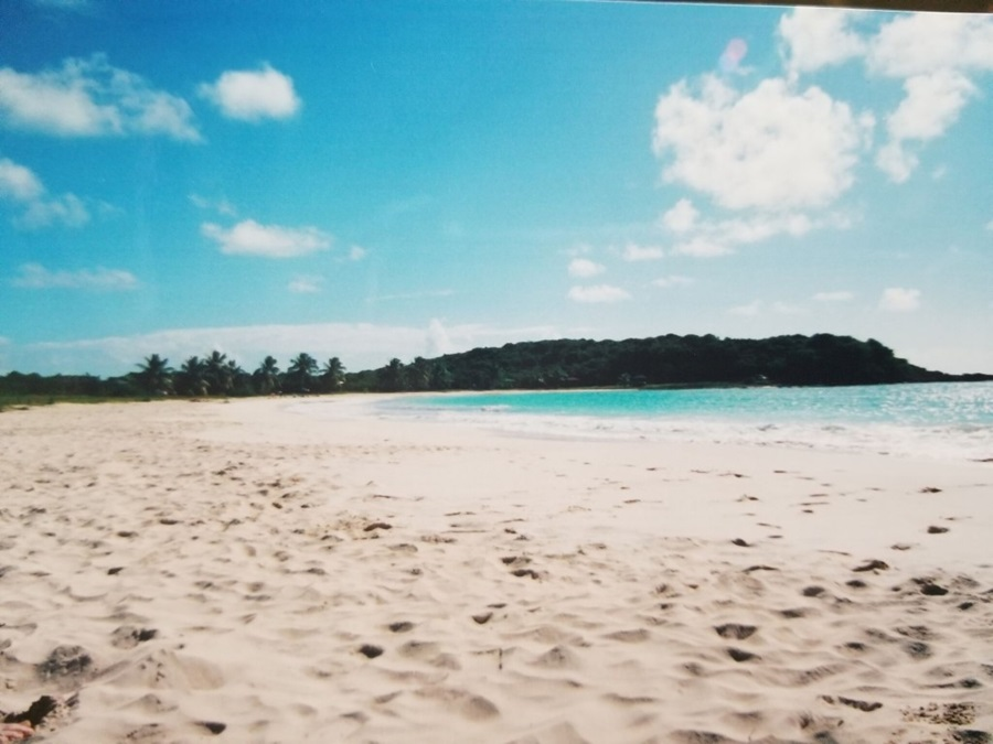 White sand beach in Vieques