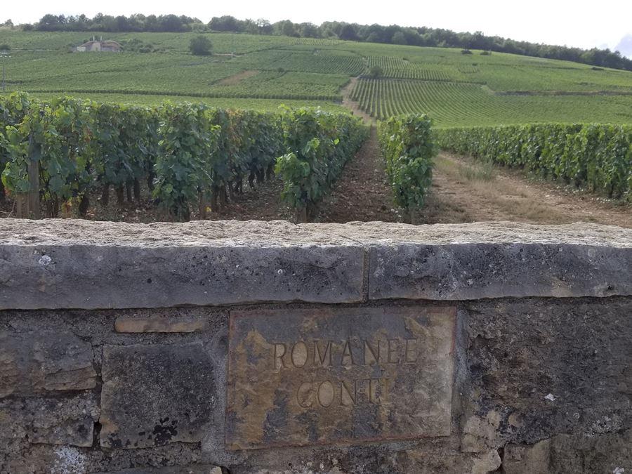 Romanee Conti vineyard