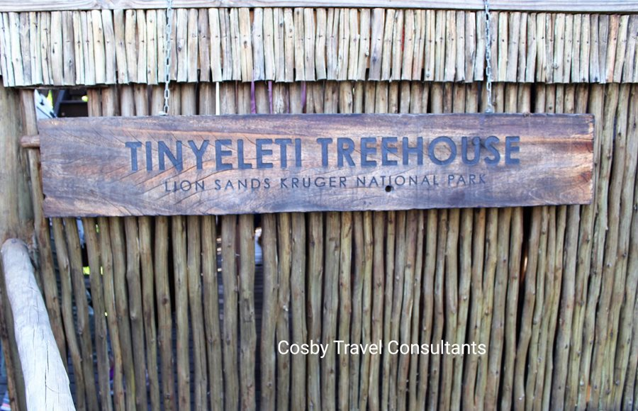 Tinyeleti Treehouse at Lion Sands Game Reserve