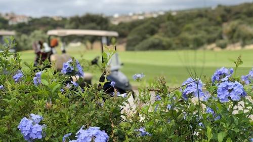 Golfing in Spain