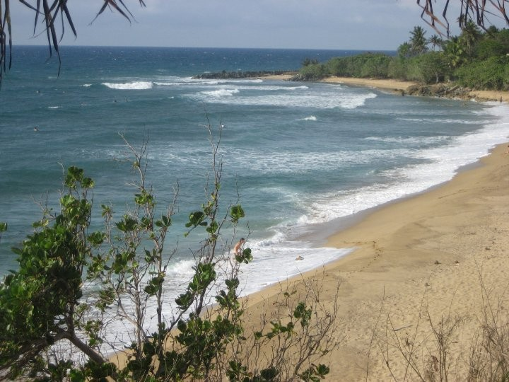 Rincon Beach - great for surfing