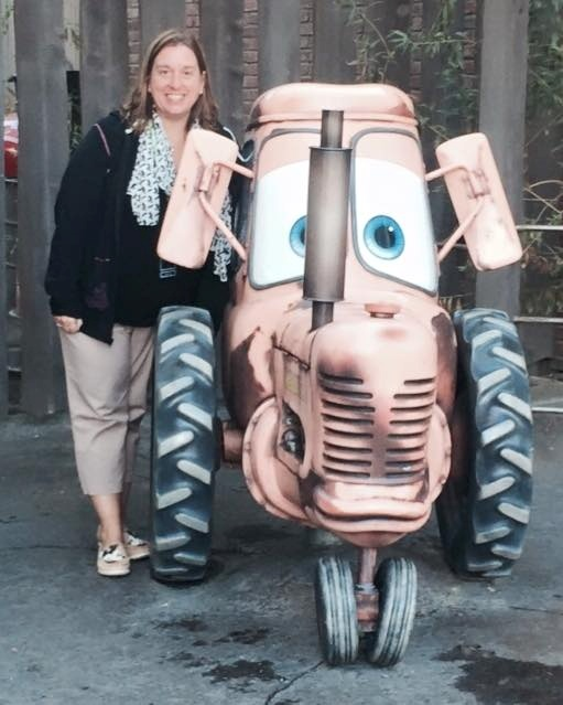 Cars Land Mater's Petting Zoo