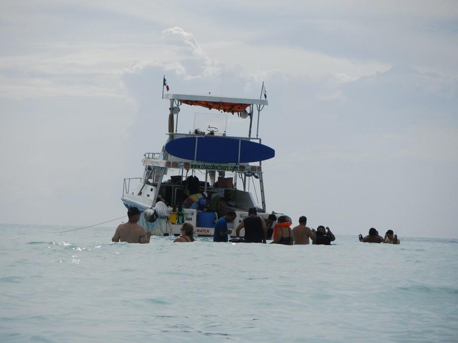 Cozumel snorkel trip
