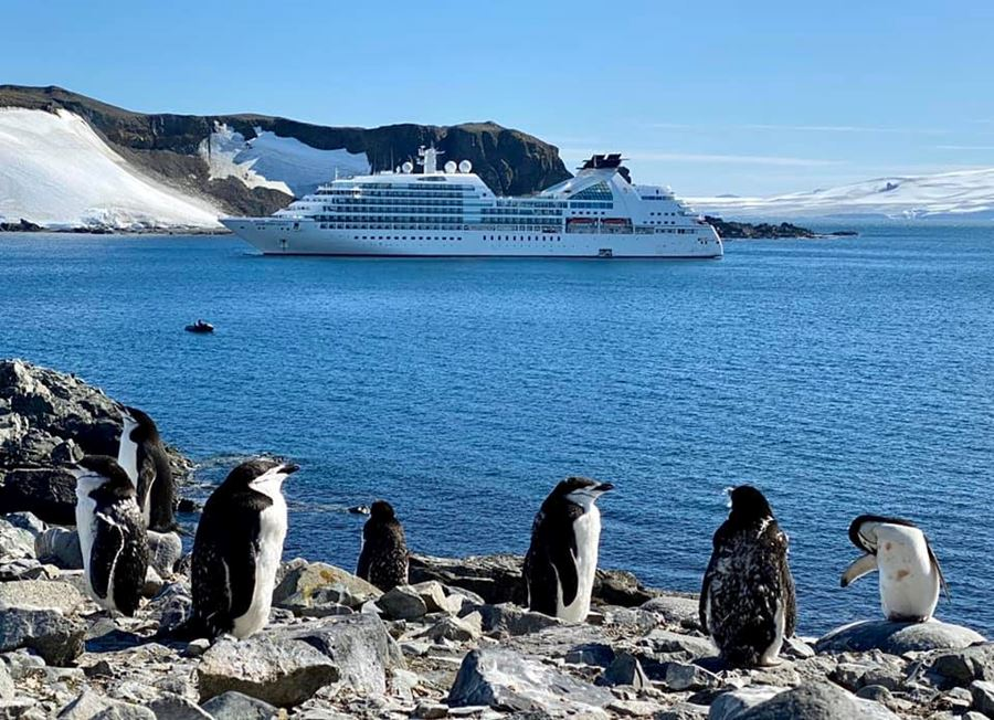Join my group-Antartica and Patagonia on Seabourn