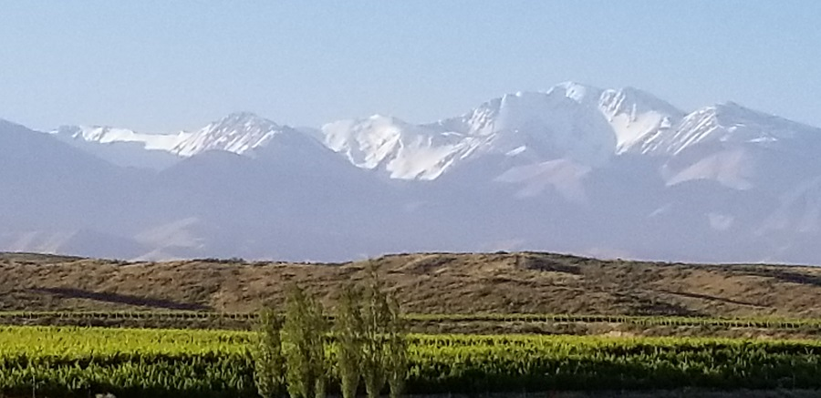 Tupungato- Home of Worlds Best Malbec