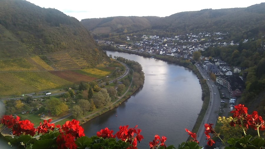river cruise down the Rhine