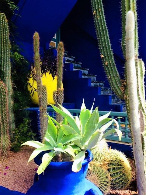 Jardin Majorelle Yves St. Laurent Marrakech