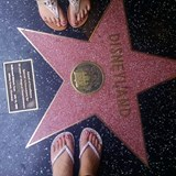 Everyone has a star on the walk of fame!!!