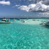 Grand Cayman Sting Ray City