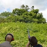 Trap shooting anyone