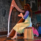 Harp music adds to a wonderful evening