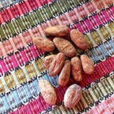 Dried CoCoa beans - very bitter