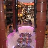 Tidal Pool Bar rises up 4 levels Oasis of the Seas