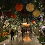 Leads to the perfect flower carousel