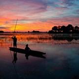 Explore the Okavango Delta in a traditional mokoro