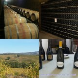 Experienced several wineries