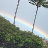 Rainbow after a rain in Maui