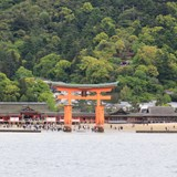 Giant Torii Gate on Myajima Island