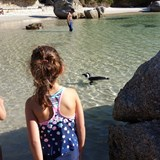 Boulders Beach - Our kids swimming with Penguins