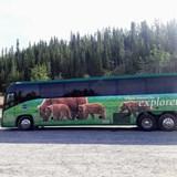 Luxury Coach - Holland America