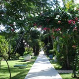 Amazing gardens at the Sandals Grande.