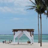 Gorgeous wedding arch on the beach.
