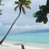 Sofitel Beach