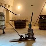 L'Astore Masseria Vineyard, Puglia
