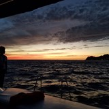 Sunset Sailing Cruise in Cabo
