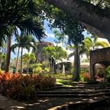 Montpelier Plantation Luxury Resort in Nevis