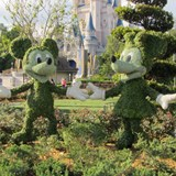 Character Greenery - Walt Disney World