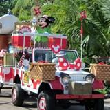 Parade - Walt Disney World - Animal Kingdom