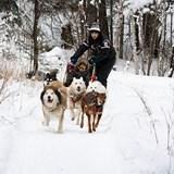 Winter Adventures in Canada
