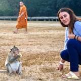 Animal Adventures in Cambodia