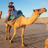 Camel Ride on Cable Beach Western Australia
