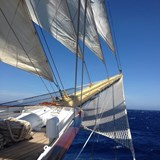 Incredible experiences on a tall ship cruise