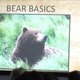 Don't miss the bear briefing in Alaska!